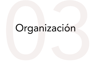 03-organizacion.png